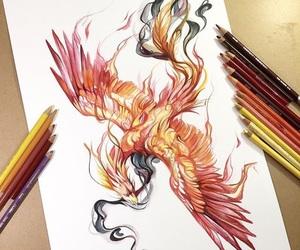 bird, art, and draw image
