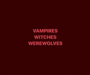 vampires, werewolves, and Witches image