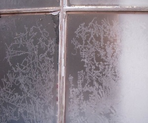 winter and frost image