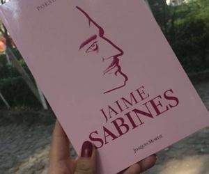 rosa, libro, and jaime sabines image