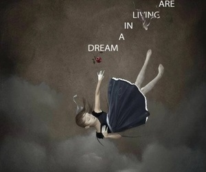 Dream, quote, and imagine dragons image