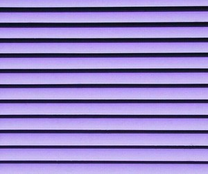 purple and wall image