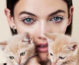 cat, kittens, and makeup image
