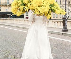 flowers, beautiful, and yellow image