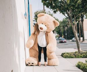 girl, teddy, and teddy bear image