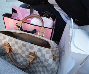 Louis Vuitton, pink, and vs image
