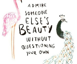 quotes, beauty, and admire image