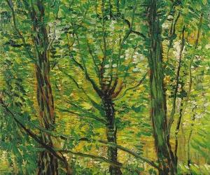 art, nature, and van gogh image