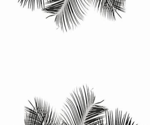 black, palm tree, and wallpaper image