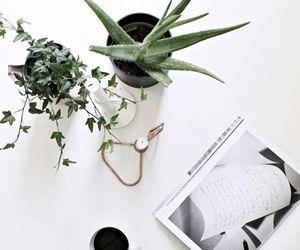 decor, design, and tumblr image