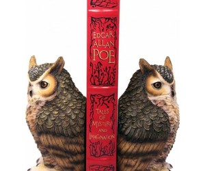book, owl, and bookend image