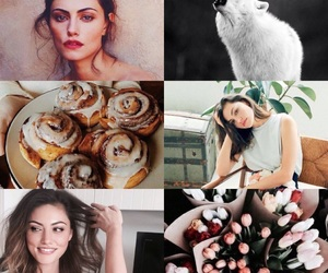 cinnamon roll, tulips, and wolf image