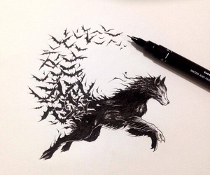 wolf, art, and bat image