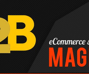 magento extensions, ecommerce extensions, and b2b ecommerce image