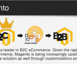 ecommerce extensions, magento extensions, and b2b ecommerce image