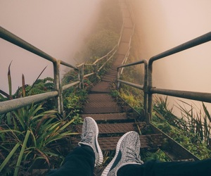 nature, travel, and fog image