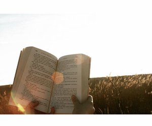book, books, and nature image
