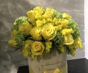 fiori, yellow, and flowers image