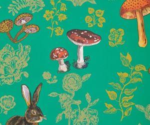 mushroom, wallpaper, and background image