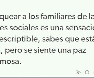 cool, familia, and frases image