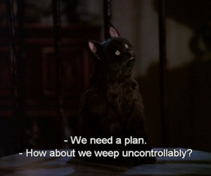 cat, sabrina the teenage witch, and salem saberhagen image