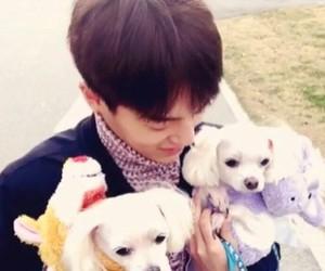 kpop, ljoe, and lee byunghun image