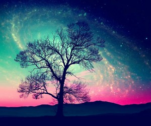 tree, galaxy, and sky image