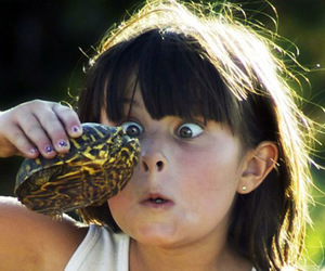 funny, girl, and turtle image
