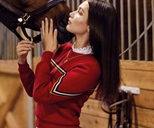 bella hadid, horse, and model image