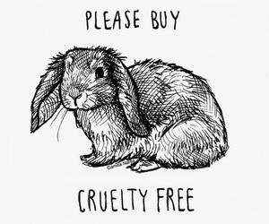animal rights, cruelty, and rabbits image