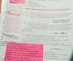 biology, inspiration, and medicine image