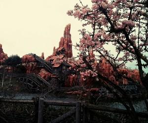 cherry tree, disneyland, and big thunder mountain image