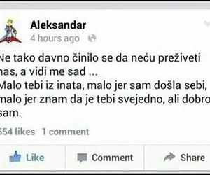 aleksandar image