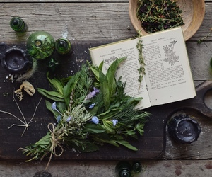herbs, magic, and witch image