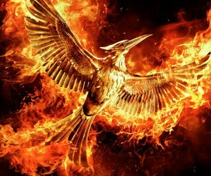 mockingjay, the hunger games, and movie image