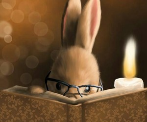 book, bunny, and read image