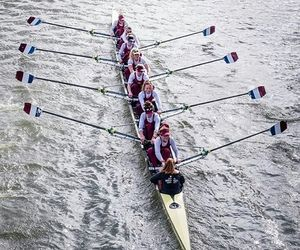 boat, row, and rowing image