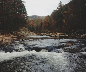 river, nature, and forest image