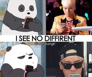 kpop, panda, and seungri image
