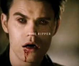 the vampire diaries, paul wesley, and stefan salvatore image