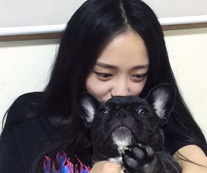 dog, girl, and korean image