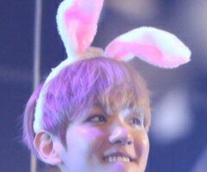 asian, bunny, and exo image