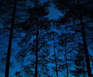 trees, night, and stars image