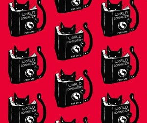 cat, pattern, and black image
