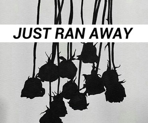 angst, black, and roses image