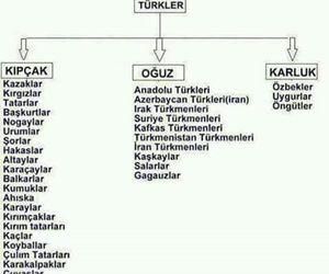 biz and turan türk'lər image