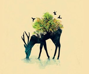 deer, art, and nature image