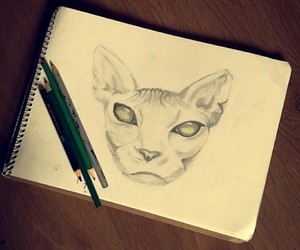 cat, greeneyes, and draw image