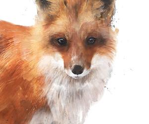 animals, red art, and fox art image