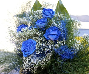 amore, blue rose, and flowers image